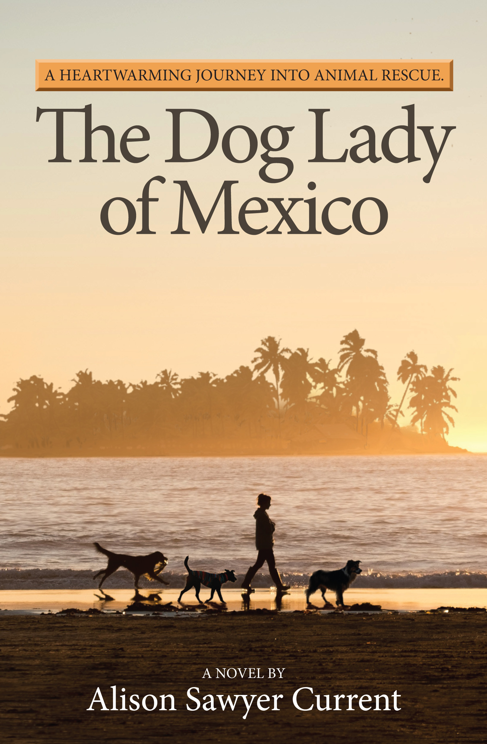 The Dog Lady of Mexico - Alison Sawyer Current